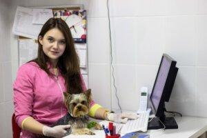 прием ветеринара-репродукторлога