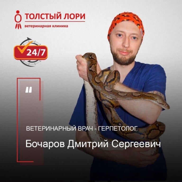 ветеринар герпетолог